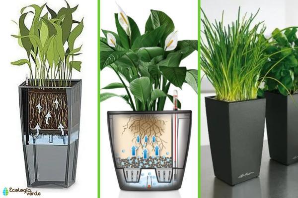 Cómo regar las plantas en vacaciones - Cómo usar hidrojardineras o macetas de autorriego
