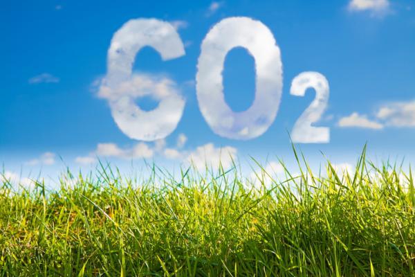 Diferencia entre efecto invernadero natural y artificial - ¿Qué es el efecto invernadero?