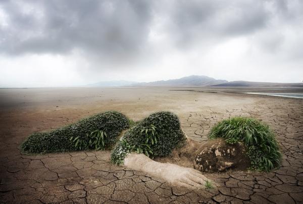 Qué es la erosión del suelo: causas y consecuencias