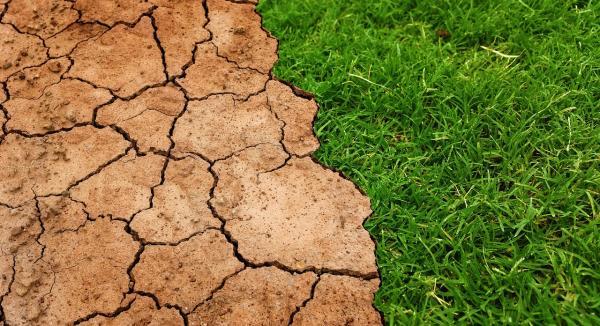 Consecuencias del cambio climático en España - Datos sobre el cambio climático