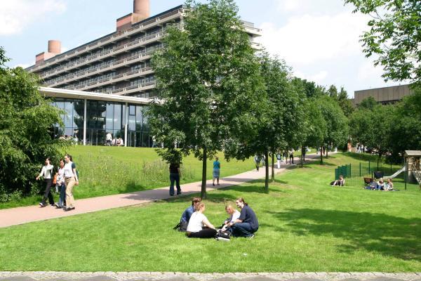 Cómo reducir la contaminación en las ciudades - Zonas verdes en las ciudades para acabar con la contaminación