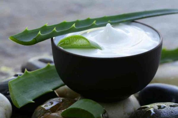 Cómo hacer gel de aloe vera casero - Cómo hacer crema hidratante de aloe vera