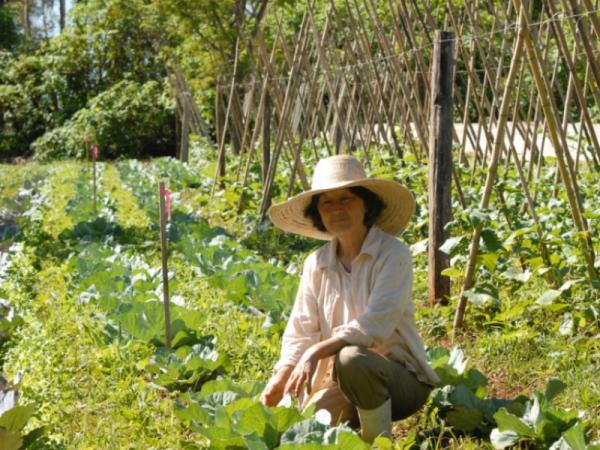 Técnicas de cultivo de agricultura ecológica - Qué son las técnicas de cultivo de agricultura ecológica y qué buscan