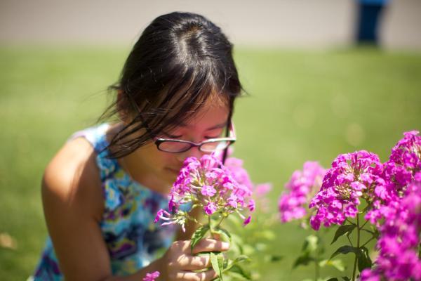 5 razones para disfrutar de la naturaleza todos los días - En la naturaleza, aprenderás a desconectar