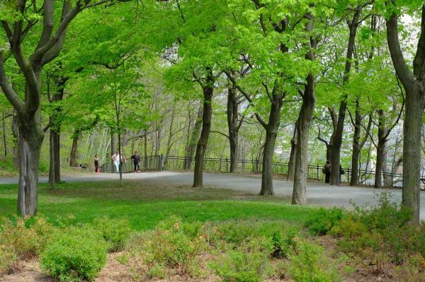 5 razones para disfrutar de la naturaleza todos los días - Hacer una pausa para dedicarnos sólo a nosotros