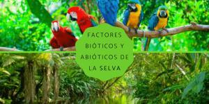 Factores bióticos y abióticos de la selva