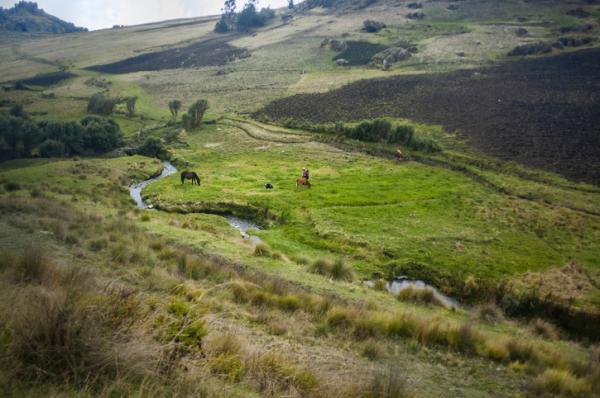 Regiones naturales del Perú - Región Quechua