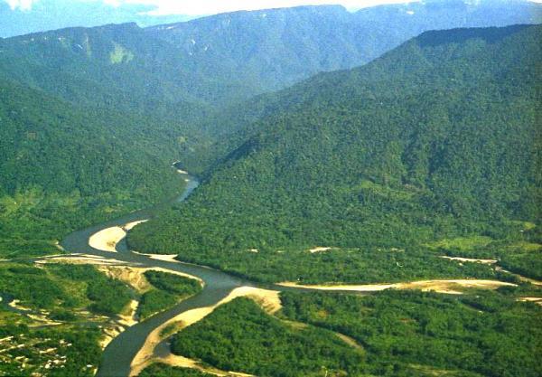 Regiones naturales del Perú - Región Selva alta o Rupa Rupa