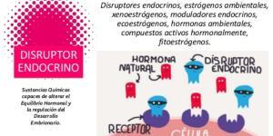 Disruptores endocrinos: qué son y lista de productos