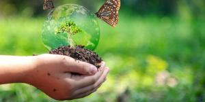 Conservación de la biodiversidad: qué es, prácticas e importancia