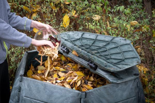 Tipos de compost - El compost común y sus tipos