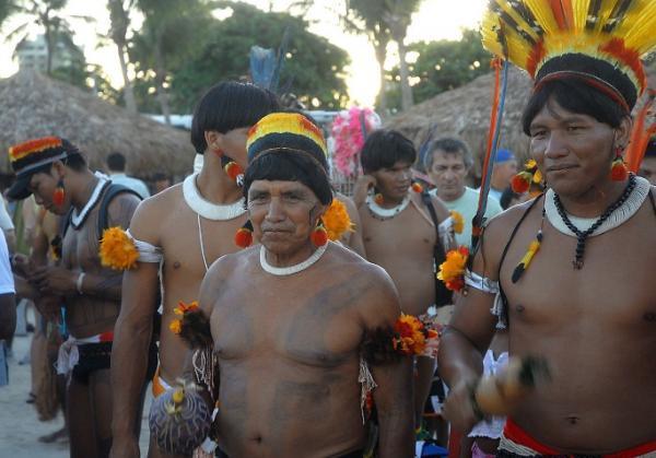 Cómo viven las tribus del Amazonas - Cómo viven las tribus del Amazonas: resumen