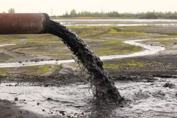 Cómo influye el hombre en el deterioro del medio ambiente