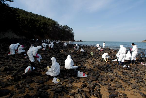 Cómo influye el hombre en el deterioro del medio ambiente - El ser humano afecta al planeta con vertidos de petróleo