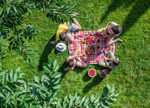Actividades ecológicas al aire libre - Hacer un picnic en el parque o la playa