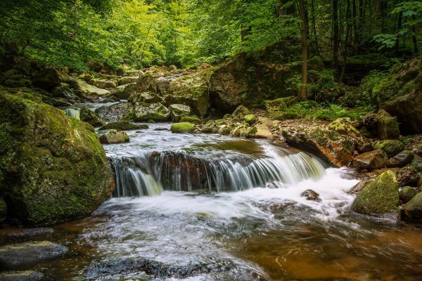 Características del planeta Tierra que hacen posible la vida - La existencia de agua en estado líquido