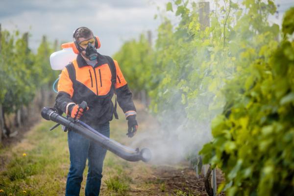 Cosas que contaminan el medio ambiente - Plaguicidas
