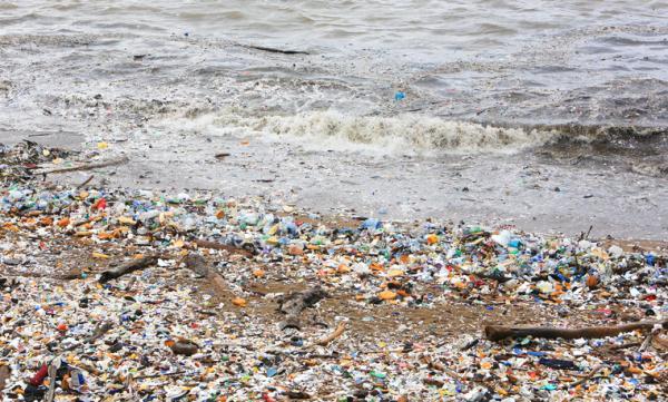 Cosas que contaminan el medio ambiente - Plásticos de un solo uso