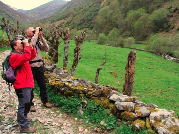 Qué es turismo sostenible o ecoturismo