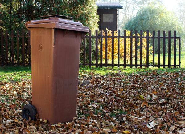 Cuáles son los tipos de contenedores de reciclaje - Contenedor marrón: orgánico