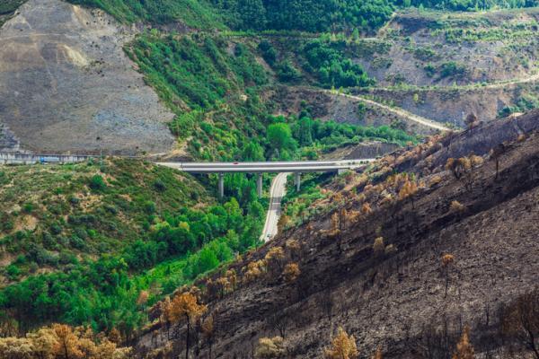 Tipos de impactos ambientales - Impacto ambiental positivo y negativo