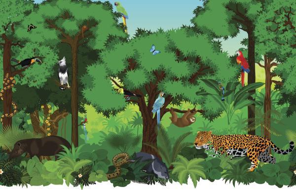 Cómo funciona un ecosistema - Cómo funciona un ecosistema - relaciones, flujos, sucesión y equilibrio