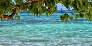 Por qué el agua del mar cambia de color