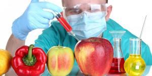Por qué los alimentos transgénicos son malos
