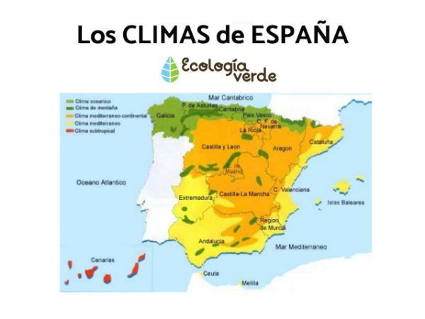 Cuántos climas hay en España