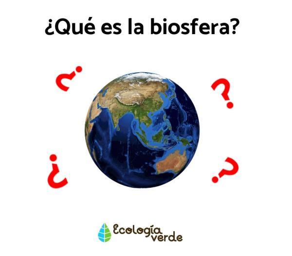 Qué es la biosfera: capas y características