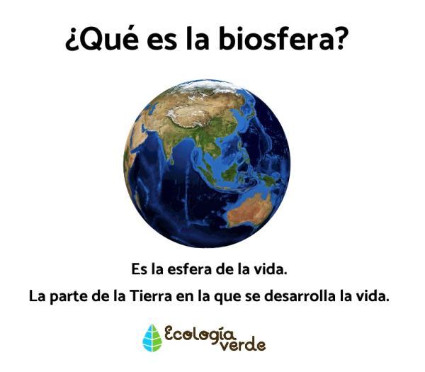 Qué es la biosfera: capas y características - Qué es la biosfera – definición