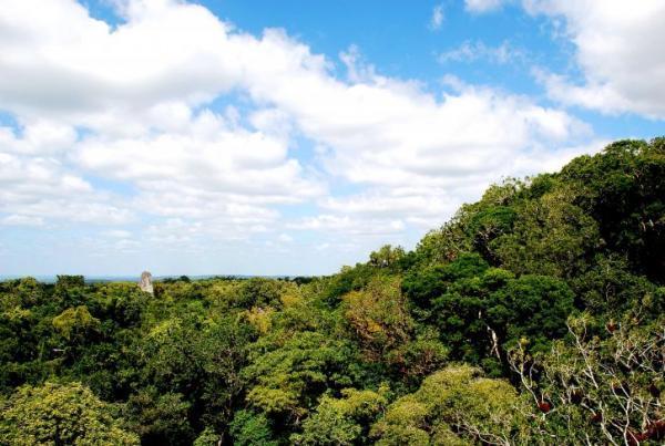 Qué es la biosfera: capas y características - Qué son las Reservas de la Biosfera