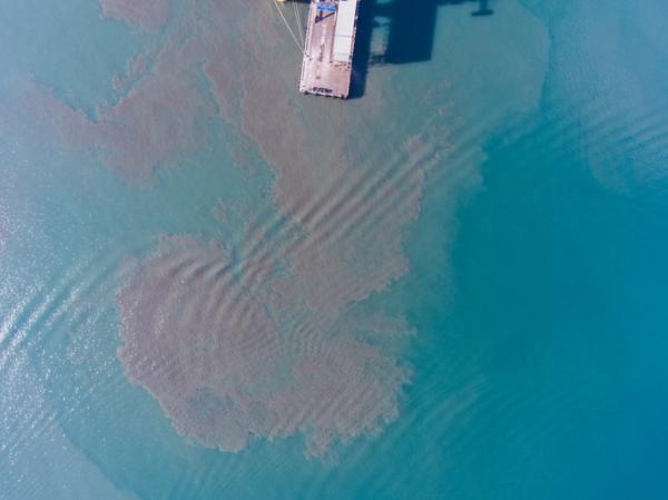 Impacto ambiental de los combustibles fósiles - Cuál es el impacto ambiental de los combustibles fósiles