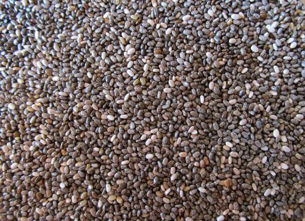 Propiedades nutritivas de las semillas de cáñamo - Qué son las semillas de cáñamo