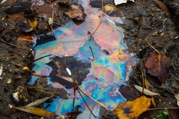 Problemas medioambientales y soluciones - Degradación del suelo