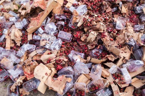 Problemas medioambientales y soluciones - Producción excesiva de comida