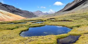 Ecosistemas lénticos: qué son y ejemplos
