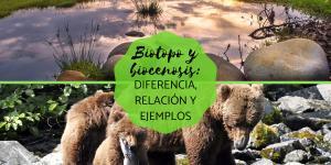 Biotopo y biocenosis: diferencia, relación y ejemplos