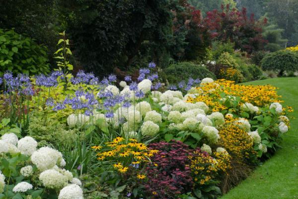 Plantas ornamentales: qué son, tipos, nombres e imágenes - Qué son las plantas ornamentales