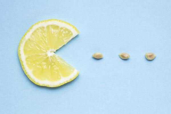Germinar semillas de limón: cómo hacerlo y cuidados - Cómo germinar semillas de limón paso a paso