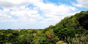 Recursos naturales de Guatemala
