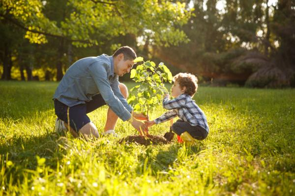 Acciones para cuidar el medio ambiente en el colegio - Prácticas para el cuidado del medio ambiente fuera del aula