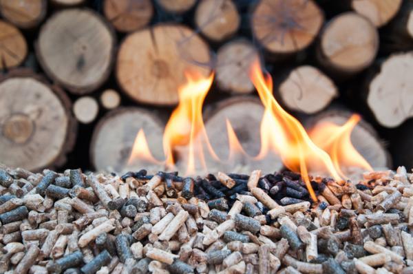 Qué es la energía biomasa y para qué sirve