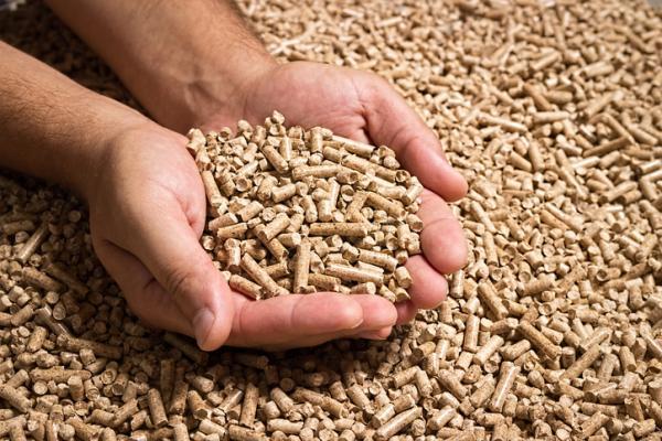 Qué es la energía biomasa y para qué sirve - Qué tipos de biomasa existen