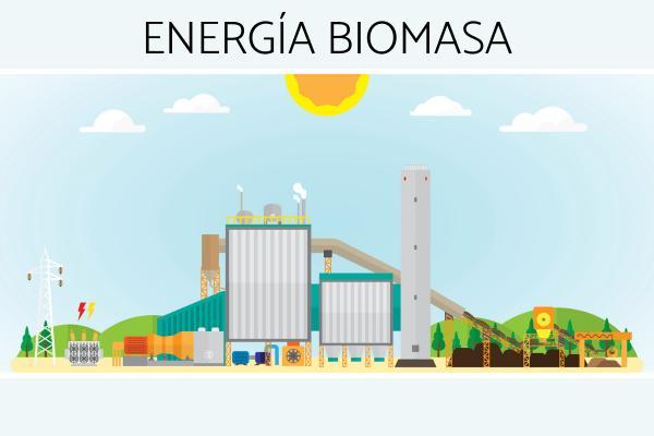 Energía biomasa: ventajas y desventajas