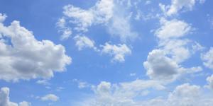 Por qué es importante el aire para los seres vivos