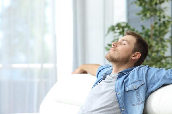 Por qué es importante el aire para los seres vivos - Por qué es importante el oxígeno para los seres vivos