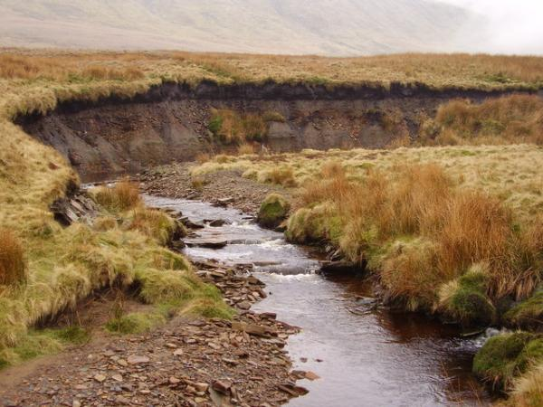 Erosión fluvial: qué es, tipos, consecuencias y ejemplos - Tipos de erosión fluvial