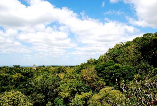 Qué son las Reservas de la Biosfera con ejemplos - Qué son las Reservas de la Biosfera