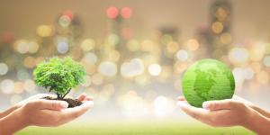 Protocolos ambientales: qué son y ejemplos